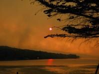Bushfires 2013