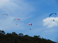 Hang gliders - Lachlin Bovill LC