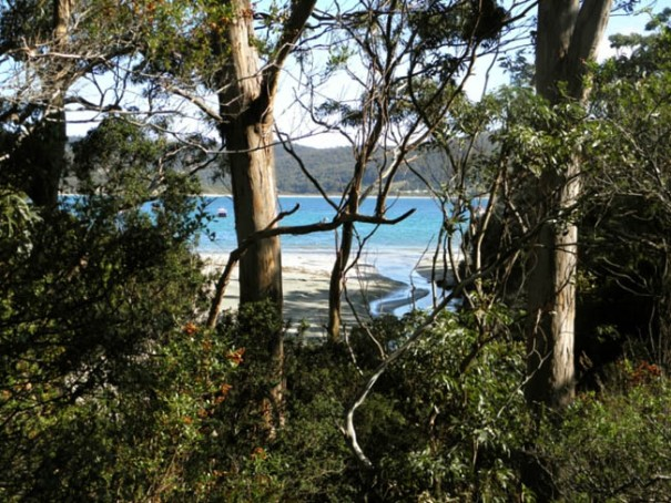 Photo: Arthur Orchard - Blowhole Creek flowing into Pirates Bay, taken from Blowhole Road.