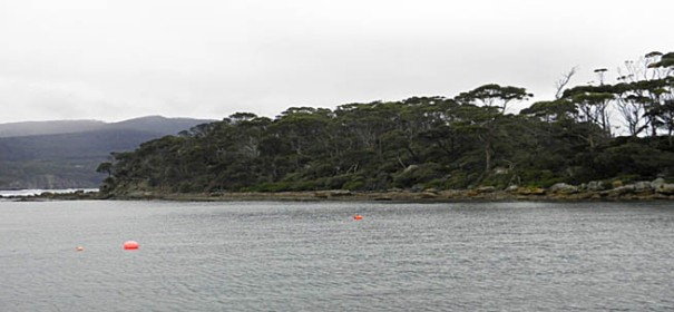 Photo: Arthur Orchard - Pirate's Bay side of Fossil Is from the jetty near the Blowhole.