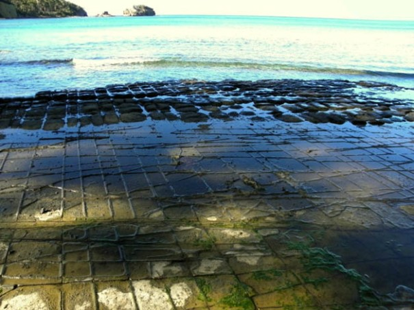 Photo: Arthur Orchard - Tessellated Pavement with Clyde Island in the background.